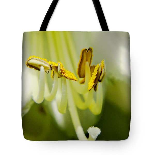 A Single Flower In Full Bloom Tote Bag