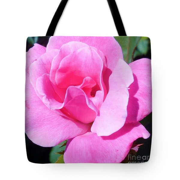 A Single Pink Rose Tote Bag by Eloise Schneider