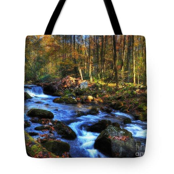 A Smoky Mountain Autumn Tote Bag