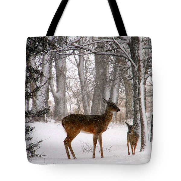 A Snowy Path Tote Bag by Elizabeth Winter