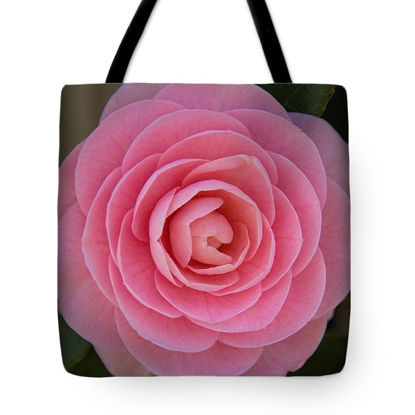 A Soft Blush Tote Bag
