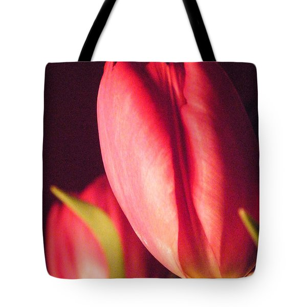 Tote Bag featuring the photograph A Soft Linearity  by Brian Boyle