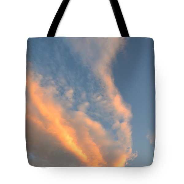 A Splash Of Peach Tote Bag