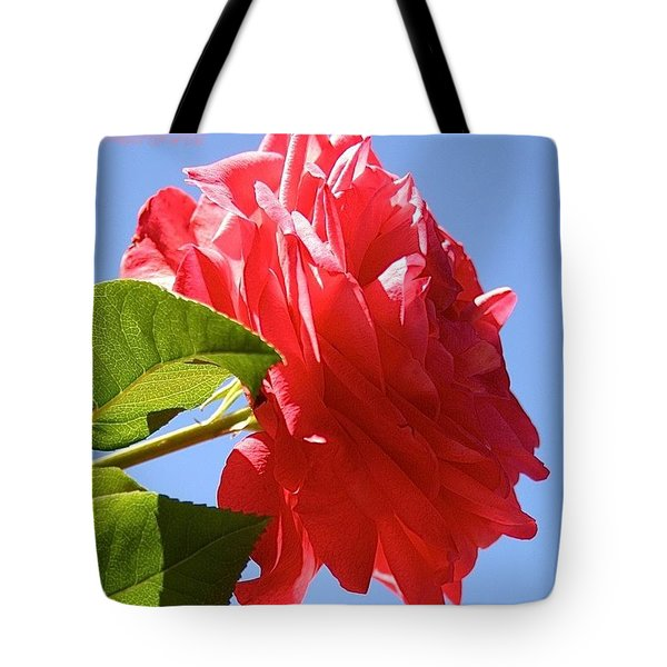 A Splendid Day For A Red Ladybird Rose Tote Bag