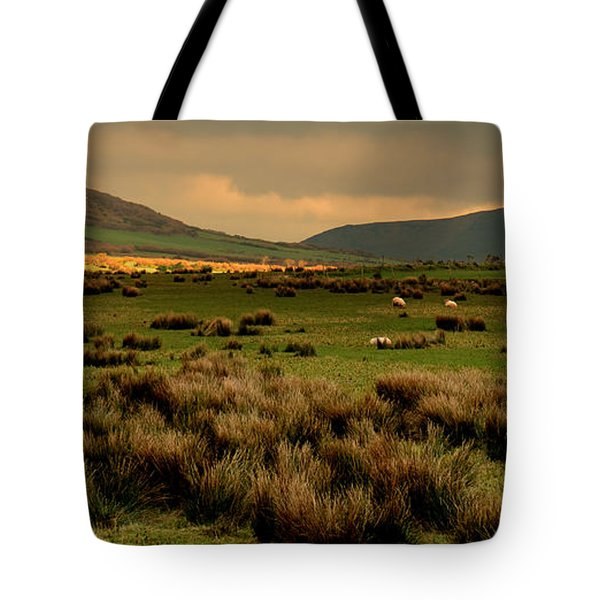 A Spot Of Sunshine Tote Bag by Barbara Walsh