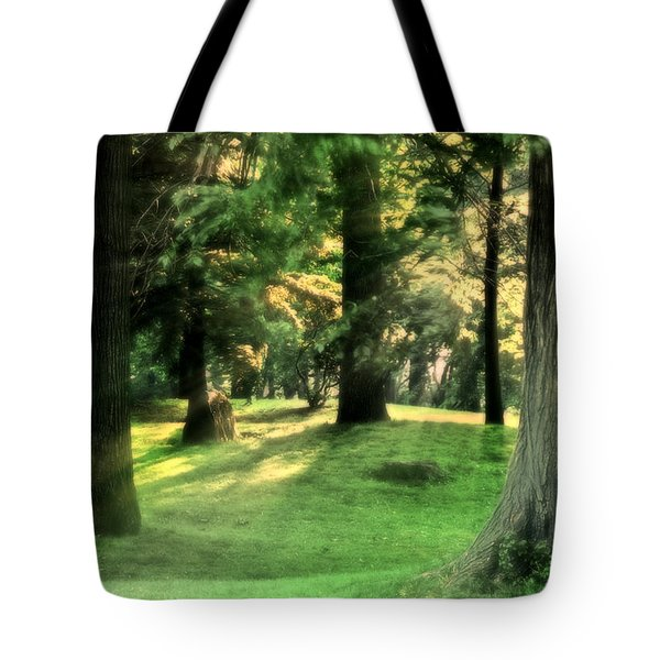 Tote Bag featuring the photograph Spring Afternoon In Brookdale Park by Kellice Swaggerty