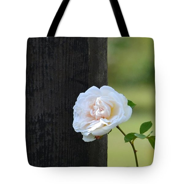 A Spring Rose Tote Bag