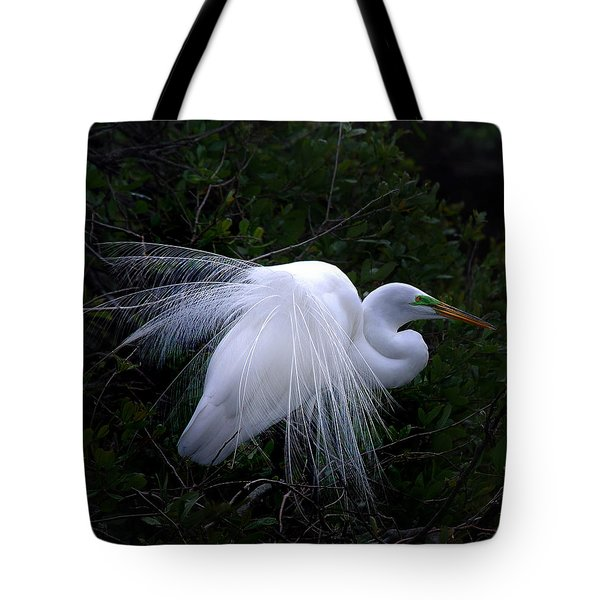 A Stand Out Tote Bag by Skip Willits