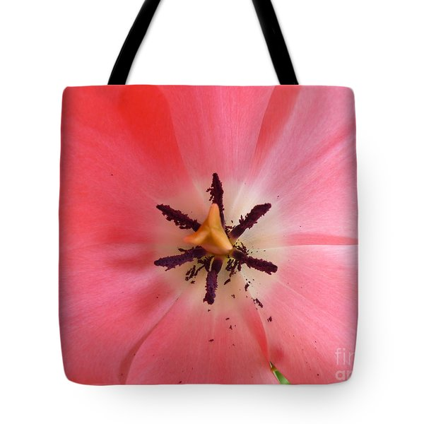 A Star Is Born Tote Bag by Lingfai Leung