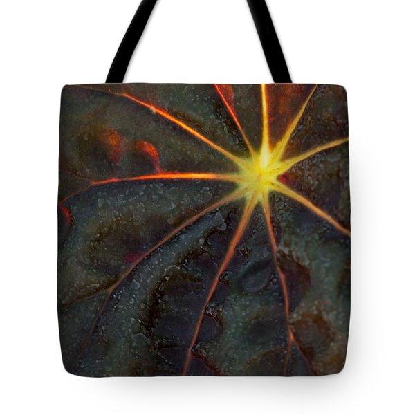 A Star Tote Bag by Sabrina L Ryan