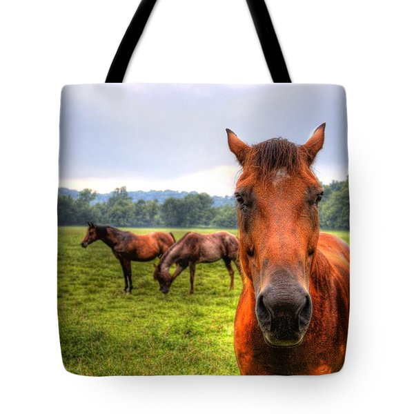 A Starring Horse 2 Tote Bag