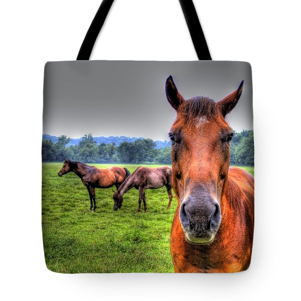 A Starring Horse Tote Bag