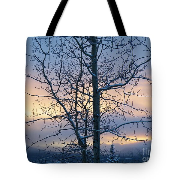 Tote Bag featuring the photograph A Stillness At The Close Of The Day by Brian Boyle