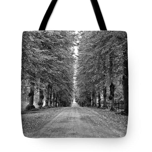 A Straightforward Path Tote Bag