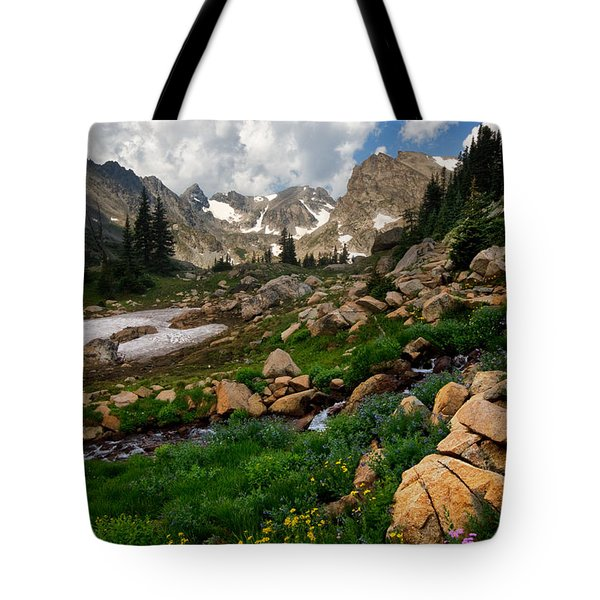 Tote Bag featuring the photograph A Stream Runs Through It by Ronda Kimbrow