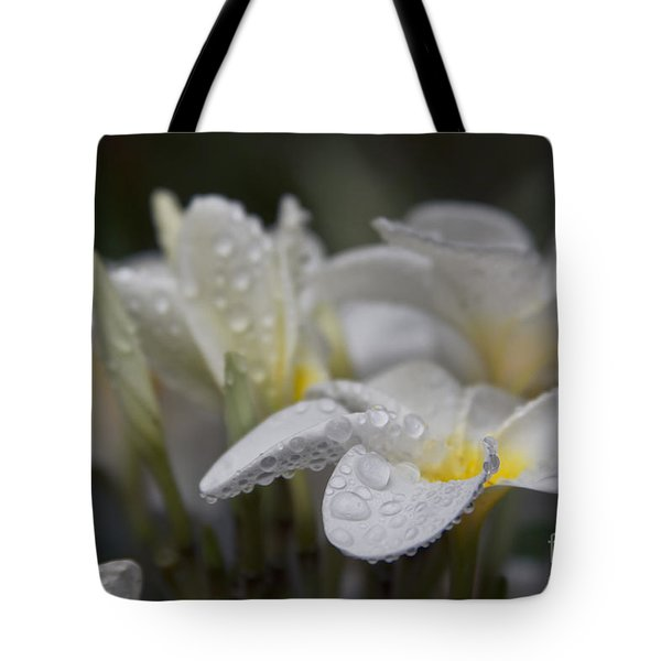 A Subtle Truth Tote Bag by Sharon Mau
