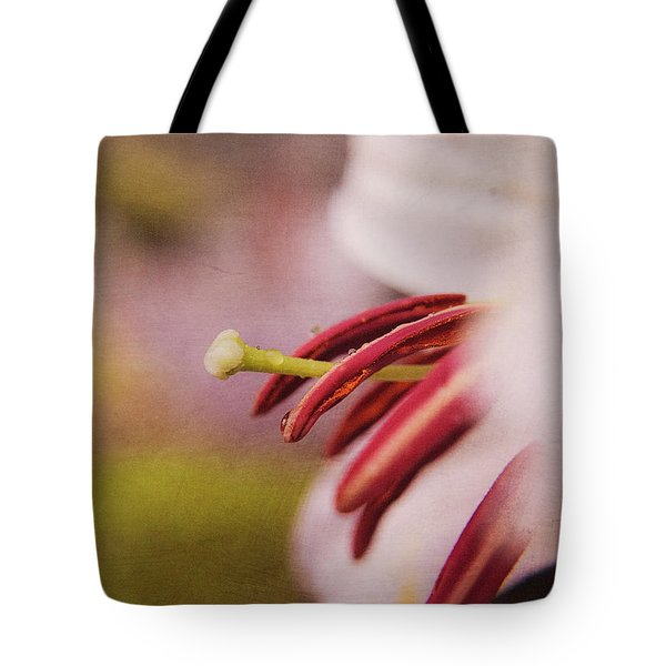 A Summers Essence Tote Bag by Billie-Jo Miller