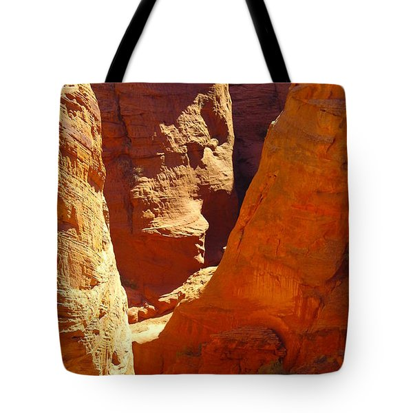 A Sun Soaked Dry Gulch Tote Bag