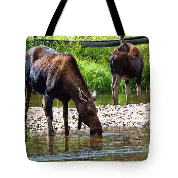 Tote Bag featuring the photograph A Tall Cool Drink by Jim Garrison