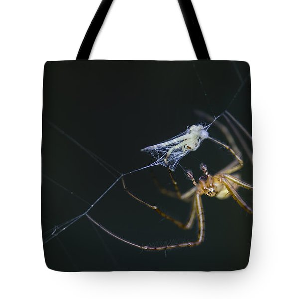 Tote Bag featuring the photograph A Tasty Treat by Windy Corduroy
