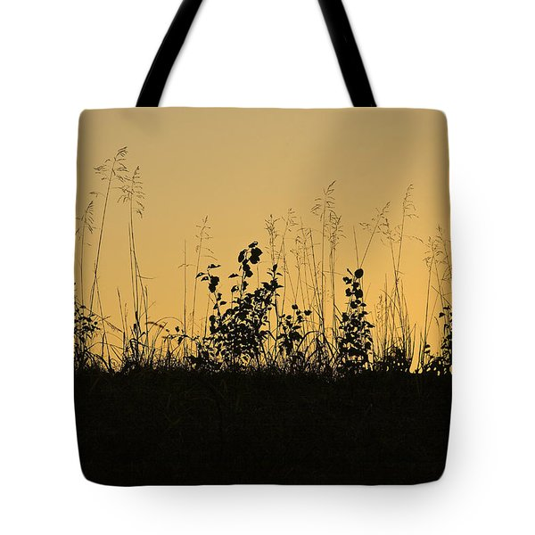 A Time Of Peace Tote Bag by Jane Eleanor Nicholas