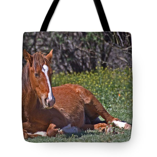 A Time To Rest Tote Bag