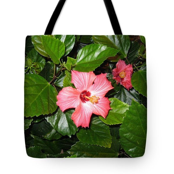 A Touch Of Florida Tote Bag by Oksana Semenchenko