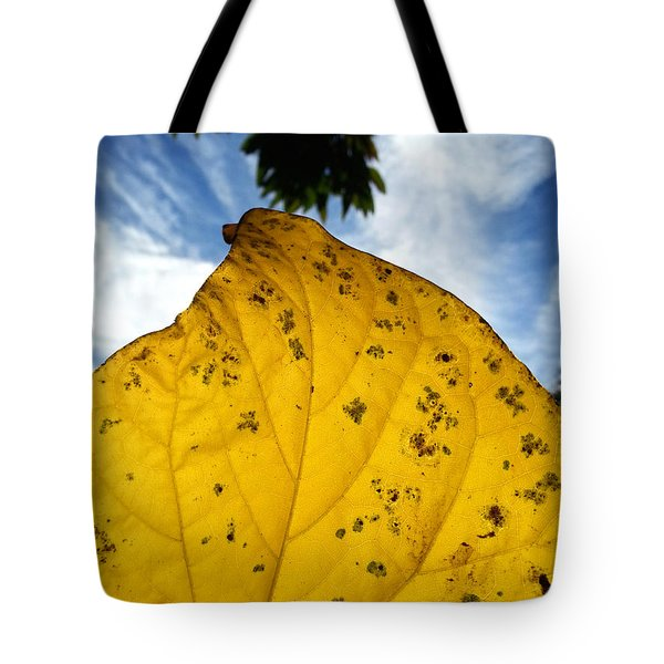 A Touch Of God Tote Bag