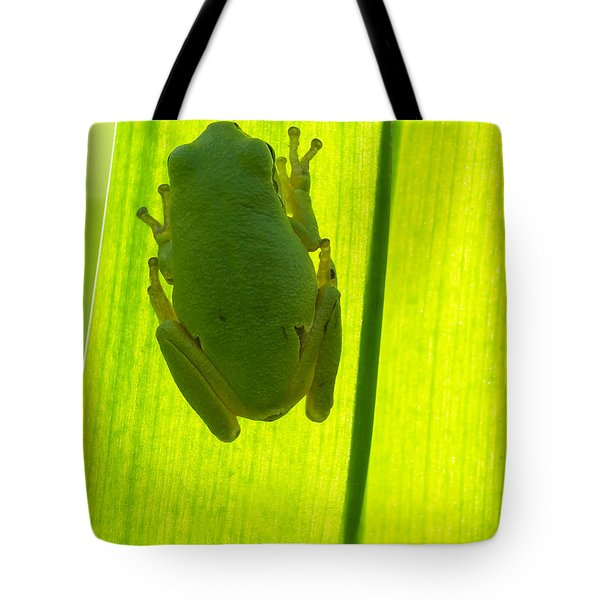 A Tree Frog Is Sitting On A Backlit Leaf That Is Shot From  Tote Bag by Odon Czintos