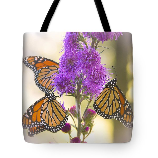 A Trio Of Monarchs Tote Bag