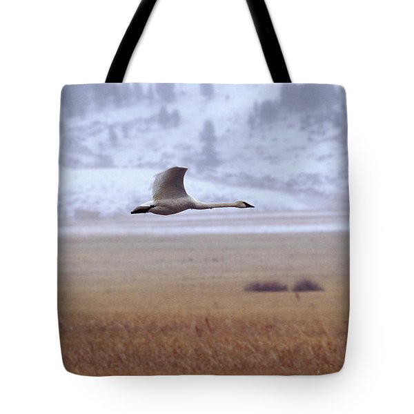 A Trumpeter Swan Flies Tote Bag