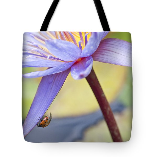 A Visiting Lady Tote Bag
