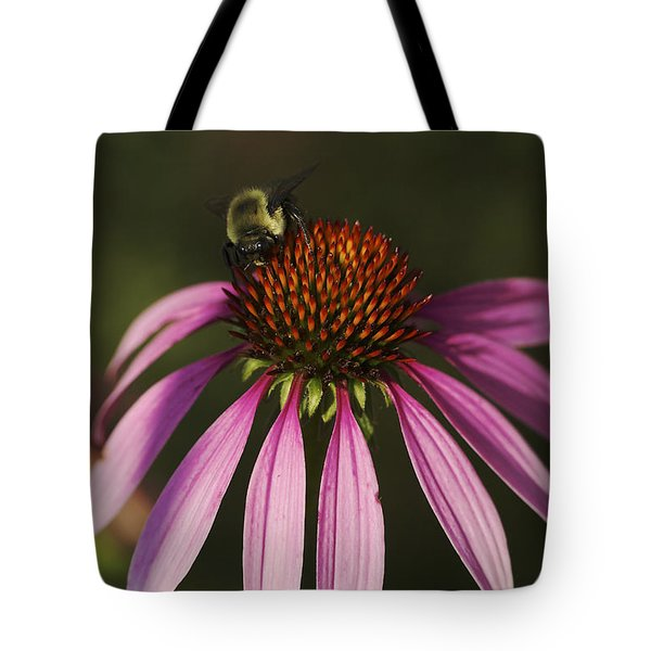 Tote Bag featuring the photograph A Visitor - A Bee On A Coneflower by Jane Eleanor Nicholas