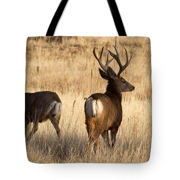 Tote Bag featuring the photograph A Walk In The Park by Jim Garrison