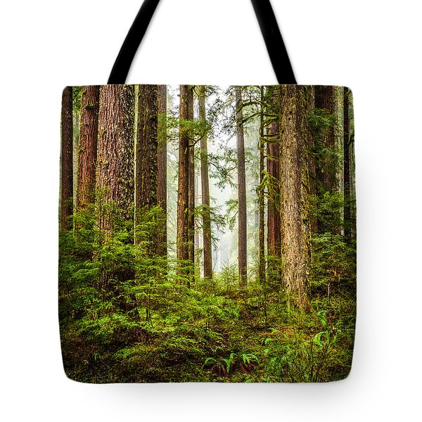 A Walk Inthe Forest Tote Bag by Ken Stanback