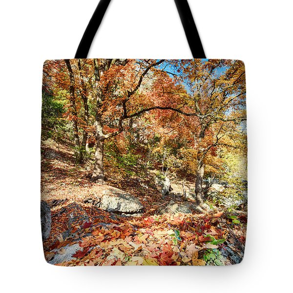 A Walk Through The Maple Trail Tote Bag