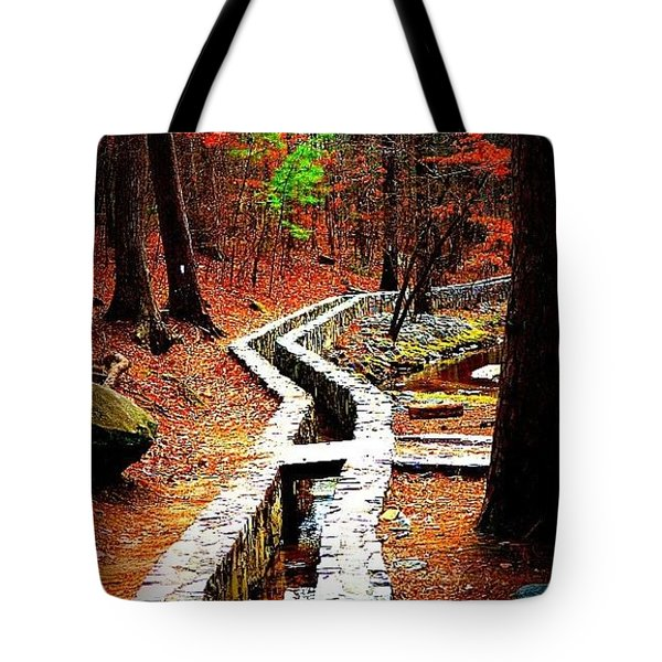 Tote Bag featuring the photograph A Walk Through The Woods by Tara Potts