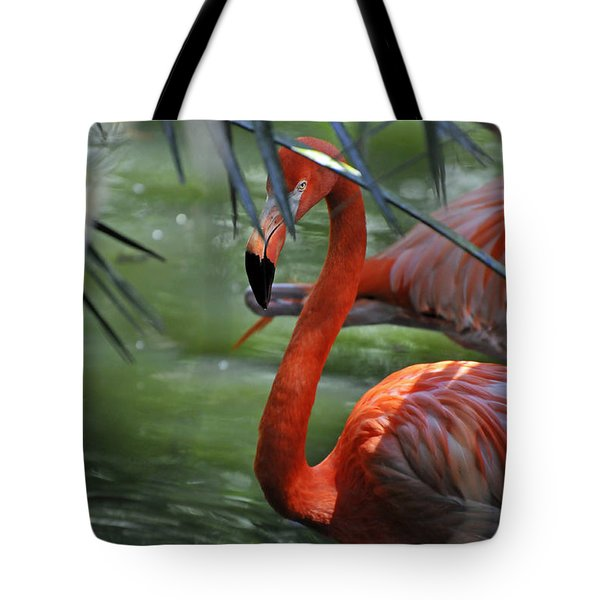 Tote Bag featuring the photograph A Watchful Eye by Kenny Francis