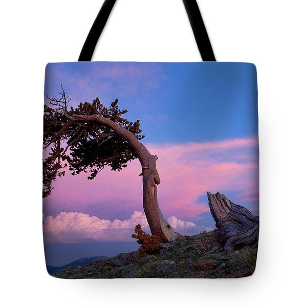 A Westerly Wind Tote Bag