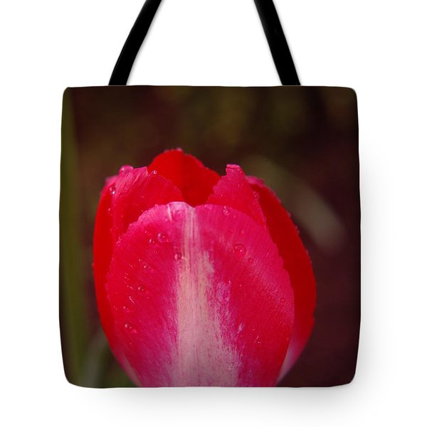 A Wet Tulip Tote Bag by Jeff Swan
