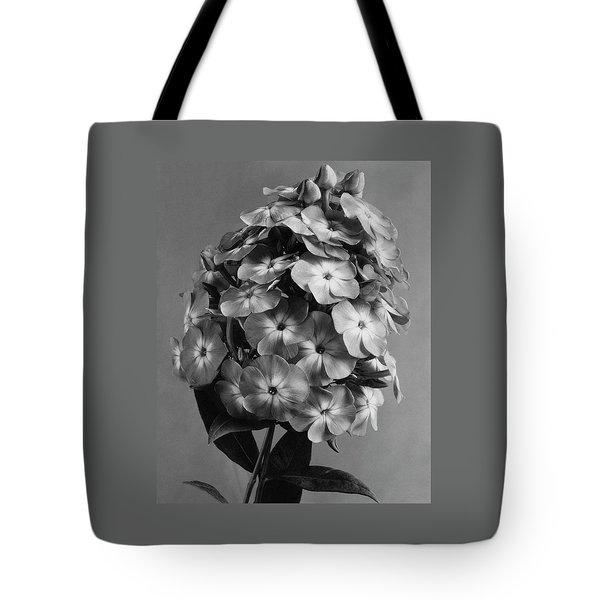 A Widar Tote Bag