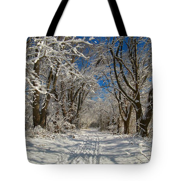 Tote Bag featuring the photograph A Winter Road by Raymond Salani III
