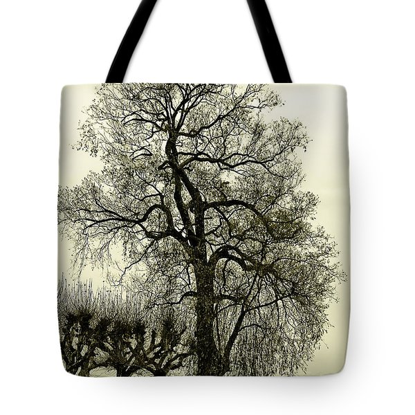 A Winter Touch Tote Bag by Syed Aqueel