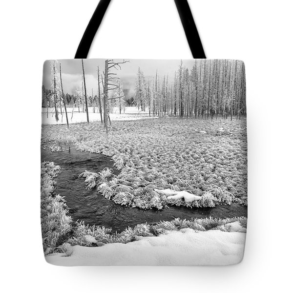 A Winter's Afternoon In Yellowstone Tote Bag by Sandra Bronstein