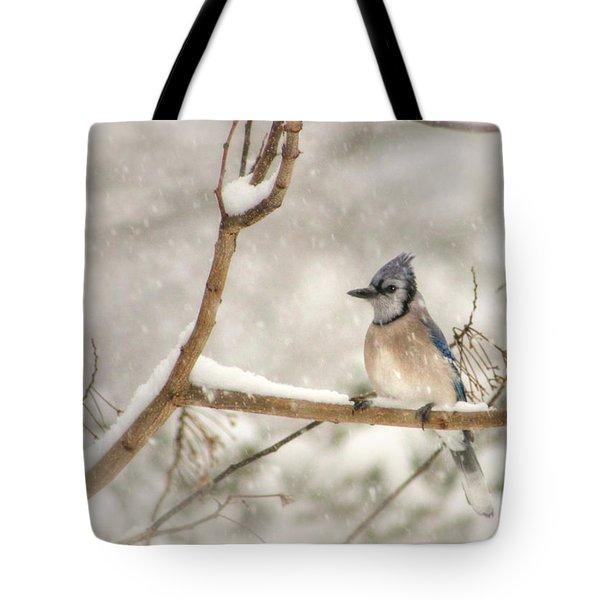 A Winter's Day Tote Bag by Lori Deiter