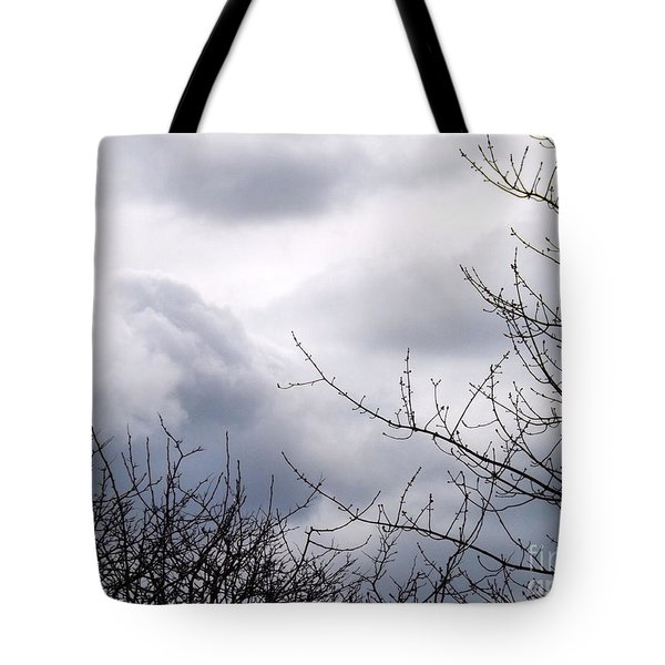 Tote Bag featuring the photograph A Winter's Day by Robyn King