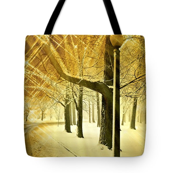 A Winter's Night Tote Bag by Marty Koch