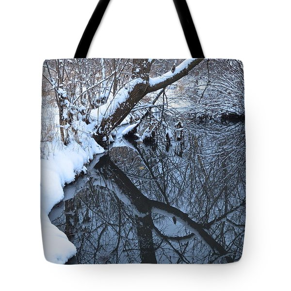 A Wintry Reflection Tote Bag by Rita Mueller