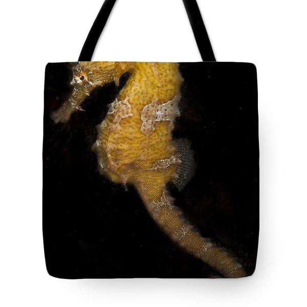 A Yellow Seahorse Tote Bag