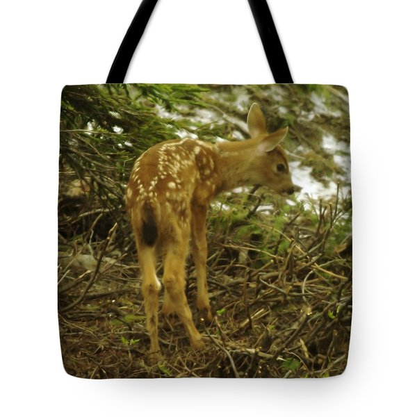 A Young Fawn In The Spring Tote Bag